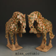 17.3 Antique Chinese Porcelain A Pair Tang Dynasty San Cai Glaze Horse Statue