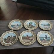 Set Of 6 Limoges T And V French Porcelain Game Plates With Birds And Ducks W/ Names