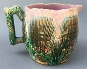 Antique Shell And Seaweed Etruscan Majolica Pitcher, Griffin, Smith, And Hill Nice
