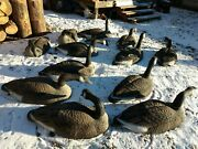 Canadian Goose Shell Decoys 12 Hunting Birdwatching
