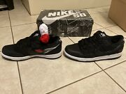Wasted Youth X Nike Sb Dunk Low Special Box Men's Size 8 Confirmed Order