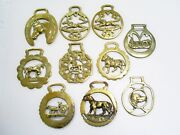 10x Vintage/antique Animal Horse Brasses/shire Or Heavy Horses Ponies And Dogs