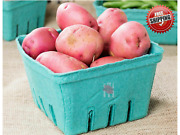 250 Case 1 Quart Green Berry Produce Basket Molded Pulp Cardboard Container Qt