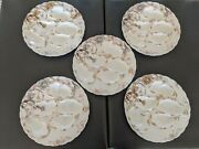 Set Of 5 Haviland Limoges Five Well Oyster Plates With Colorful Floral Design An