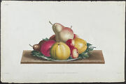 Prevost - Plate Of Fruits. 36 1805 Collection Hand-colored Stipple Engraving