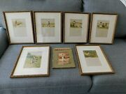 Antique Victorian Childrenand039s Book And 6 Framed Plates Out Of Town Artist L. Watt