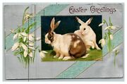 Vintage 1908 Winsch Back Easter Postcard Cute Bunnies White Flowers Silver Face