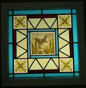 Victorian Old English Leaded Stained Glass Window Hand Painted Bird 18.75 Sq.