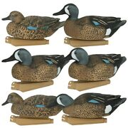 Ghg Pro Grade Blue Winged Teal Duck Decoys 6 Pack