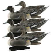 Ghg Over Size Pintail Duck Decoys 6 Pack
