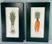 Framed Set Of 2 Martha Hinson Vegetable Prints Numbered Carrots Scallions Onions