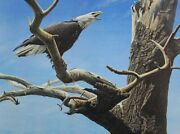 Call Of The Wild - Robert Bateman - Signed And Numbered Ltd Ed Print - Mint