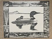 """Loon Mother And Chick Lithograph Print Unframed 16x20"""" Water Birds"""