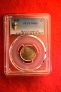 1895 Liberty Nickel Pcgs Certified Gem Bu Ms--65 Magnificent Obv And Rev Color 5