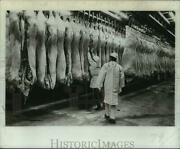 1972 Press Photo Butchers Examine Meat Hanging In Cooler New York - Tua37259