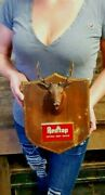 Vintage Redtop Beer Sign Stag Antlers Mount Rare Advertising Extra Dry Liquor