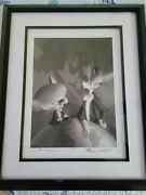 Pinky And The Brain Alan Bodner Harry Sabin Signed Lithograph Animaniacs 219/500