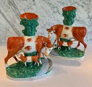 Pair Antique Staffordshire Large Cow Cows With Calf Spill Vases 12 19th C