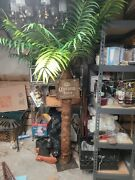 Christmas Corona Extra Beer Artificial Palm Tree Find Your Beach 7 Feet Tall