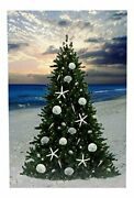 Christmas Tree On The Beach With Sand Dollars And Starfish Led Lighted Canvas
