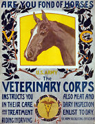 Vintage Poster.veterinary Corp.room Art Decor.house Home Decoration.1054