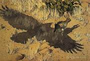 Bev Doolittle Escape By A Hare-collector-indian-native American-rabbit-art