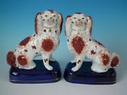 Pair Staffordshire Pottery Spaniels Russet And White On Blue Bases