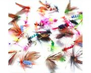 Freshwater Trout Salmon Bass Fly Fishing Wet Flies Insect Bug Hooks Lures Bait