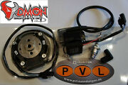Pvl Racing Analog Ignition System Penton Motorcycle Racing Dmon-parts Selettra