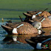 Avery Outdoors Greenhead Gear Ghg Pro Grade Blue Winged Teal Duck Decoys