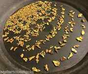 Buy Our Best Rich Gold Paydirt Concentrates By The 1/2 Pound   Bullion Nugget