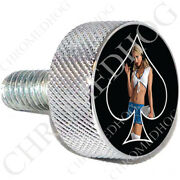 Chrome Sm Or Lg Harley Twin Cam Air Filter Cleaner Bolt - Pin Up Girl School Sbb