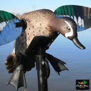 Mojo Elite Series Blue Wing Teal Spinning Wing Motion Motorized Robo Duck Decoy