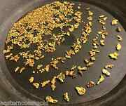 8 Oz. Rich Gold Paydirt - Concentrates Paydirt Nuggets Flakes Panning Pay Dirt