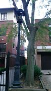 Vintage Victorian Cast Iron 12and039 Street Light Post Black One Only