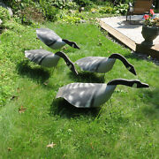4 Vintage 60's Wooden Head Canadian Geese Goose Hunting Decoys Newsprint Flong