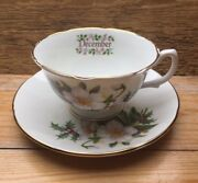 Royal Grafton Cup And Saucer/december/flower Of Month/bone China/vintage Style