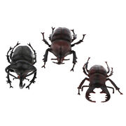 3x Lifelike Plastic Beetle Insect Figures Bugs Model For Kids Collections