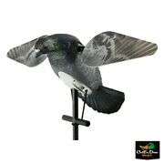 Lucky Duck - Lucky Hd Pigeon Spinning Wing Motion Decoy
