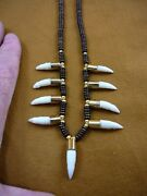 G170-206 1 Gator Alligator Tooth 9 Teeth Gold Capped Aceh Bovine Bone Necklace