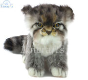 Hansa Sitting Pallas Or Manul Cat Kitten 7299 Soft Toy Sold By Lincrafts Est1993