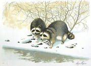 Wayne Cooper Ringtailed Bandits Signed Lithographsnowy Landscape Raccoons