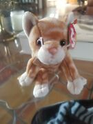 Ty Beanie Baby Amber The Tabby Cat 8 With Tag