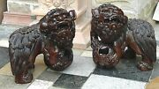 Pair Antique 19c Chinese Large Cherry Wood Fu-dog Statues Side-by-side