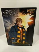 Star Ace 1/6 Fantastic Beasts And Where To Find Them Newt Scamander Figure S6
