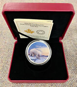 2018 Arctic Animals And Northern Lights - 30 Fine Silver Polar Bear Coin