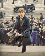 Eddie Redmayne Signed Fantastic Beasts And Where To Find Them 8x10 Inch Photo