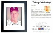 Joe Dimaggio Signed Autographed New York Yankees 8x10 Inch Photo Framed Psa/dna