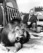 Cannon William Conrad Posing With Lion Prints And Posters 193084