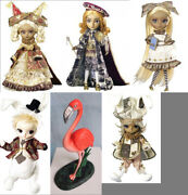 Free Shipping Nrfb Very Rare Another Alice Set Pullip Dal And Taeyang 5 Dolls